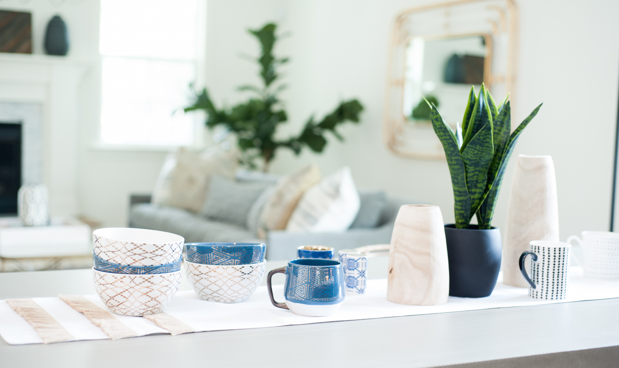 Crescent Homes - Indoors Plants Guide - Snake Plant