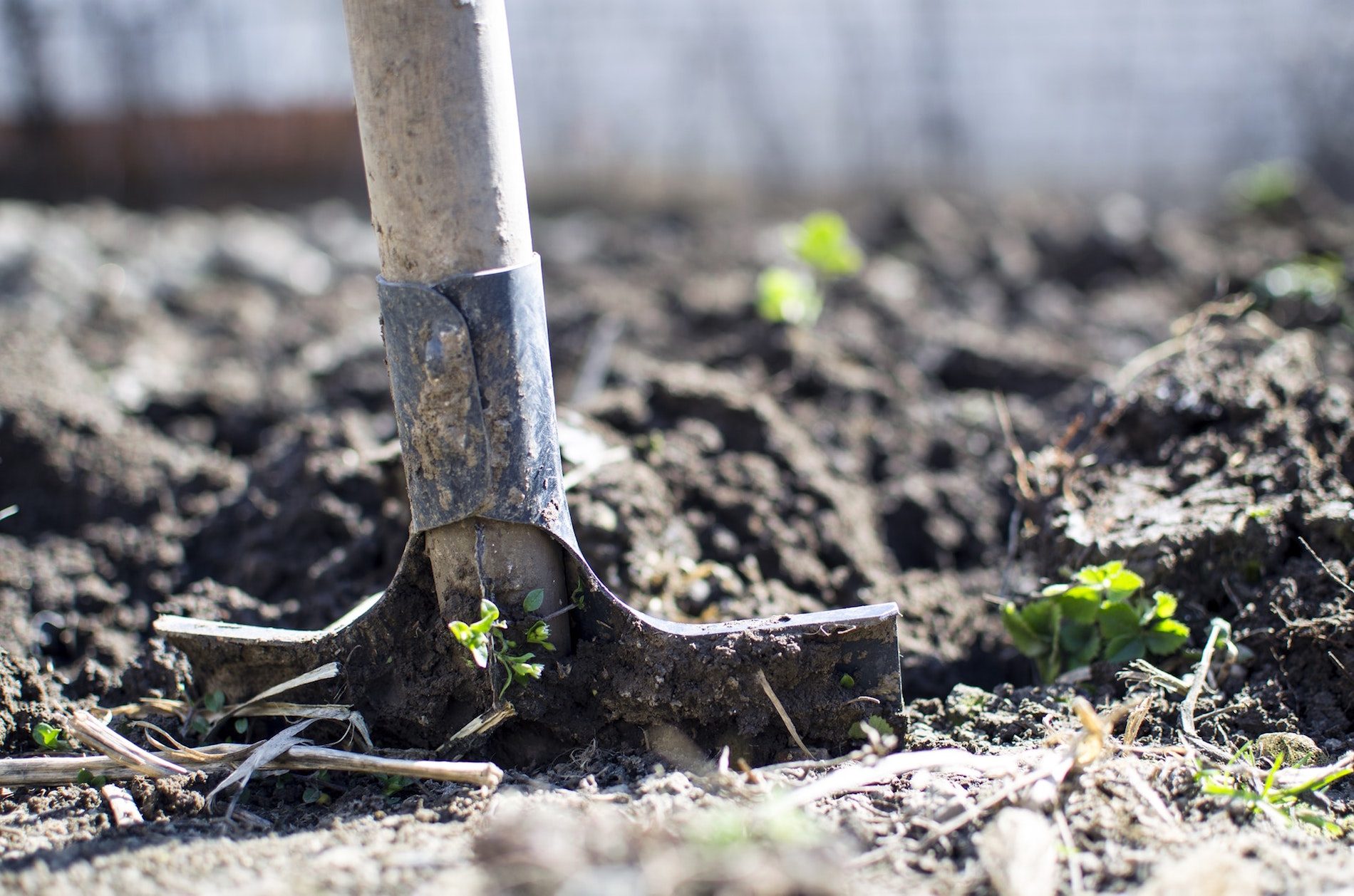 Crescent Homes Fall Gardening Tips: Clean Up Your Summer Garden